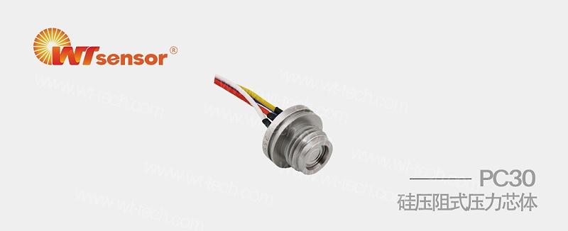 PC30硅压阻式压力芯体