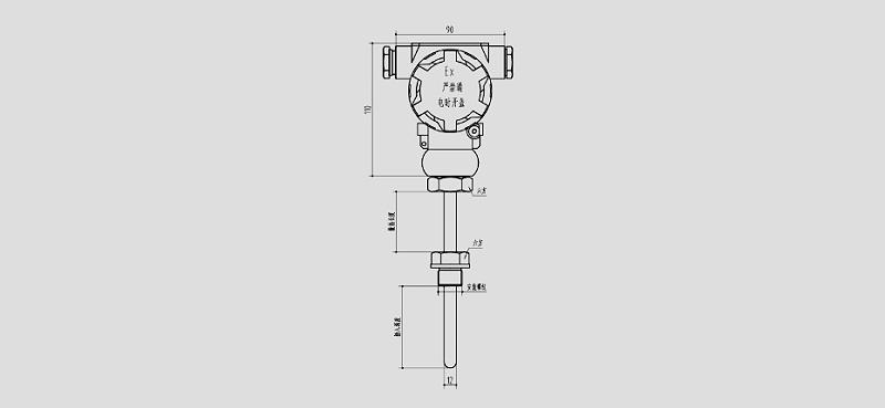 PCT401防爆型温度变送器