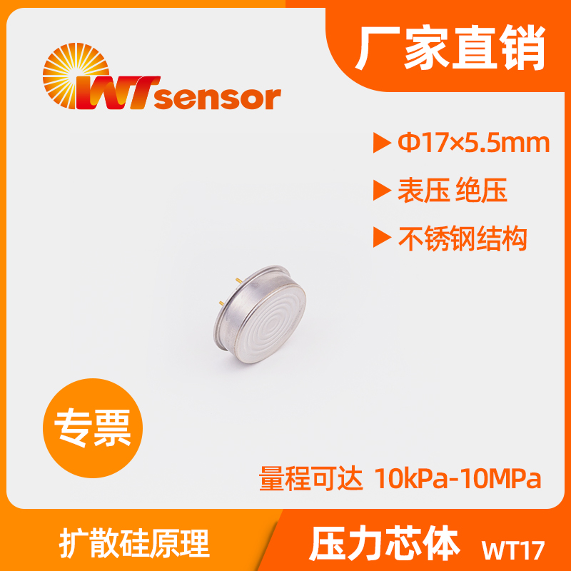 WT17 (Φ17×5.5mm) 压力芯体